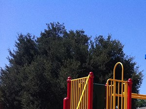 Apartments in Boyle Heights, Los Angeles, CA - Wyvernwood Garden Playground
