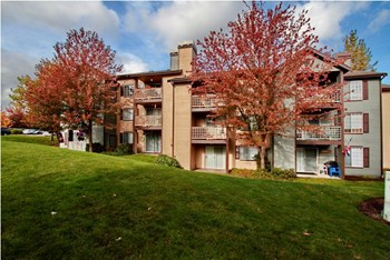 35434 25th Ave SW 2-3 Beds Apartment for Rent Photo Gallery 1