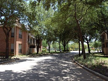 401 McDermott Street 1-2 Beds Apartment for Rent Photo Gallery 1