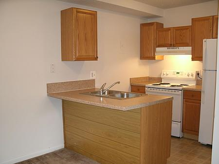 Rich Shaker Style Cabinetry at University Plaza, Kansas City