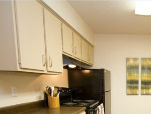 1425 S. 55th St. 1-3 Beds Apartment for Rent Photo Gallery 1