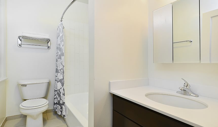 Spa Inspired Bathrooms at Irving Courts by Reside Apartments, Illinois, 60613-3146