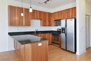 1500 N Damen Ave 2 Beds Apartment for Rent Photo Gallery 1