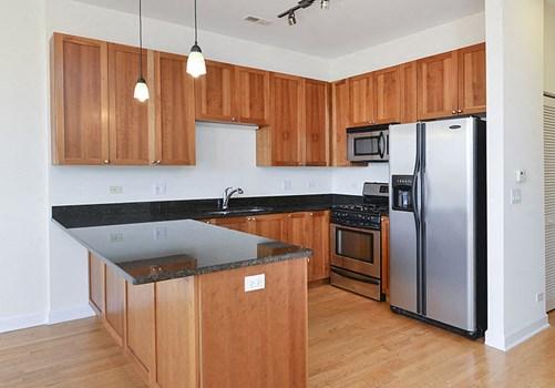 1500 N Damen Apartments Community Thumbnail 1