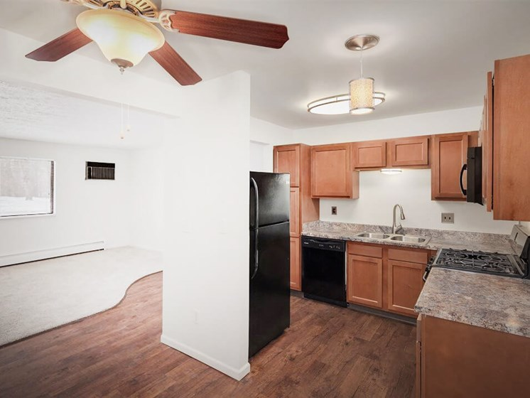 Grand Rapids kitchen with updated appliances