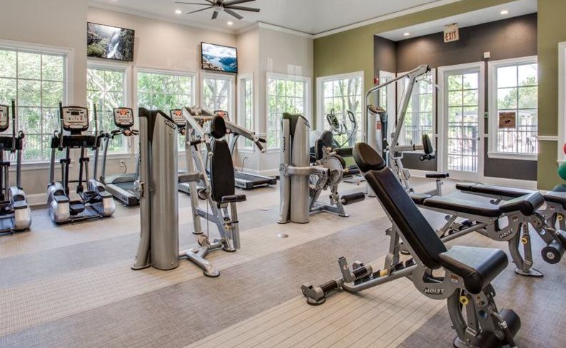 Fitness Center With True And Hoist Cardio And Strength Training Equipment at The Gio, Plano, TX, 75074