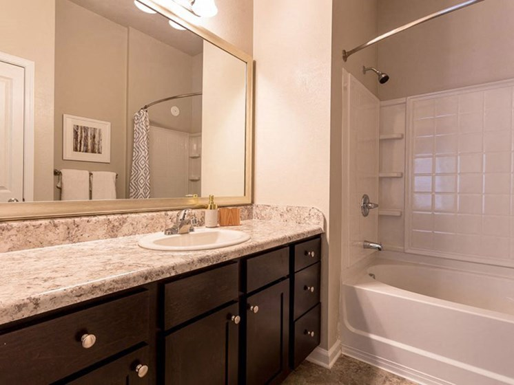 Master Bathroom With Large Vanity and Shower at Creekside at Greenlawn Apartments in Columbia, SC