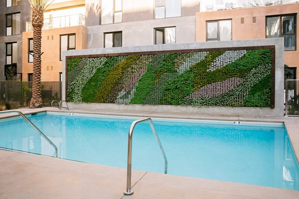 Swimming Pool, at Block C Apartment Homes, North City, 92078