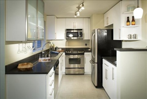 gourmet kitchens with dishwasher and disposal at The Martine Apartments, Bellevue, Washington