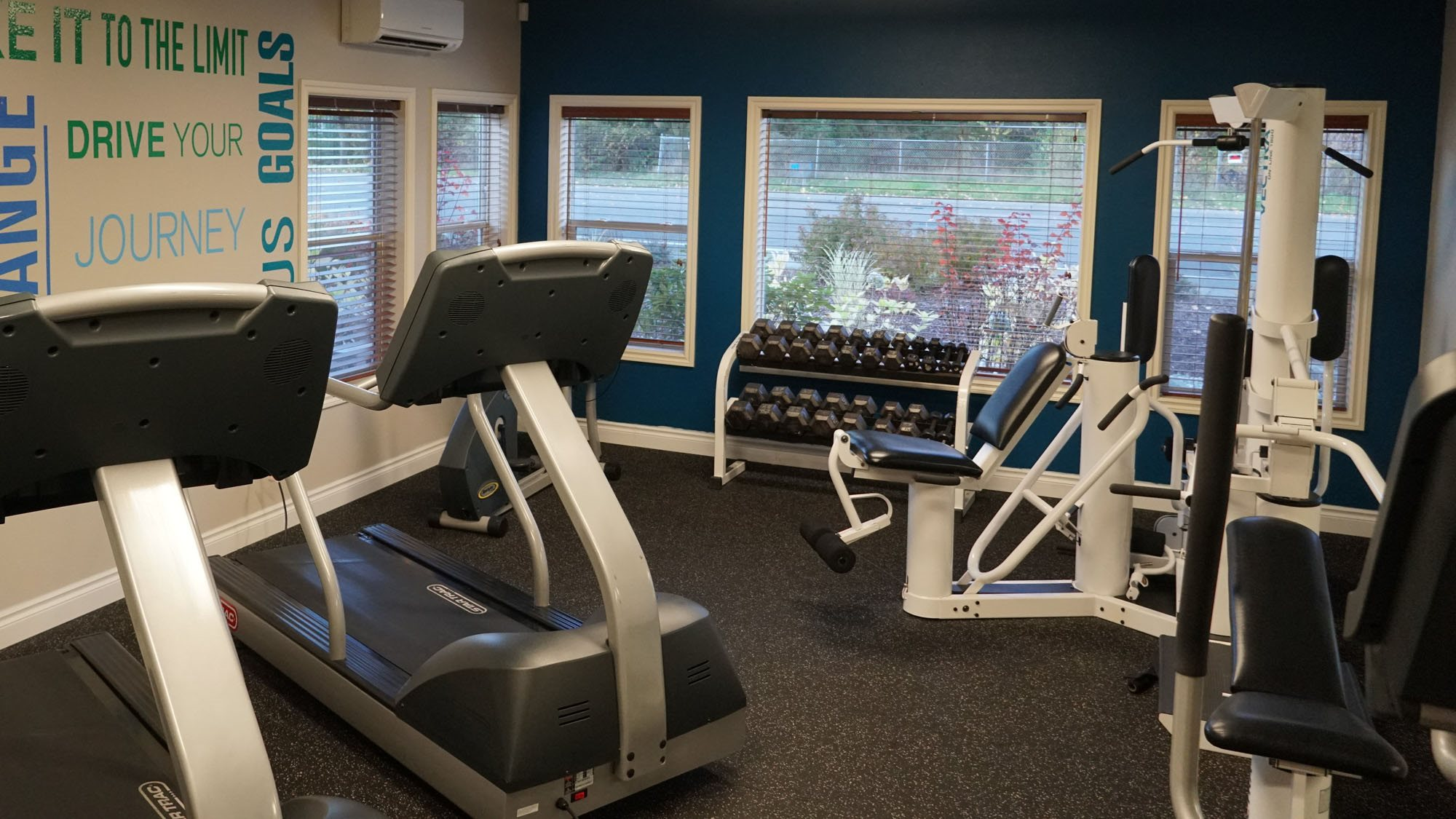 fitness center- cardio machines, weighted machines, free weights