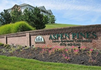 1700 Aspen Pines Drive 1-3 Beds Apartment for Rent Photo Gallery 1