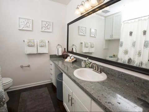 Apartments for Rent in Koreatown, CA - The Chadwick Apartment Homes Bathroom