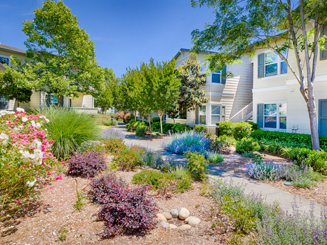Beautiful Landscaping and Park-like Setting at Harvest Park Apartments, CA, 95404