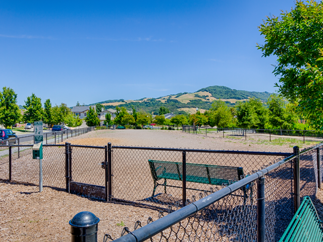 Harvest Park Apartments, California, 95404 is a Pet Friendly Community With Dog Park