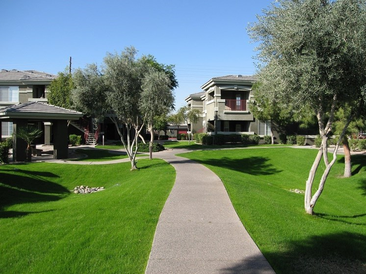 Avondale-AZ-Crystal-Springs-Apartments-Community-Landscape