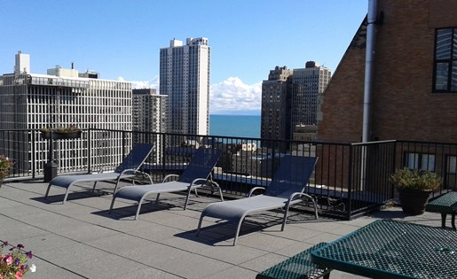 14 West Elm Apartments, Chicago, IL 60610 with Rooftop Sundeck