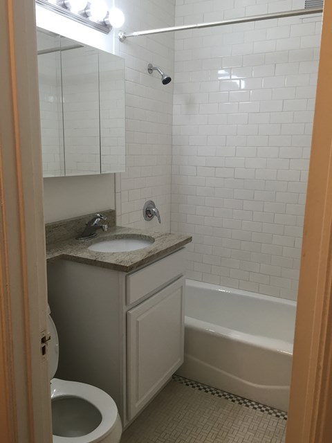 Classic Bathroom Features 14 West Elm Apartments, Chicago