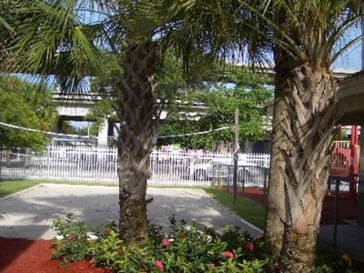 Outdoor volleyball court with palm trees_ Allapattah Gardens Miami, FL