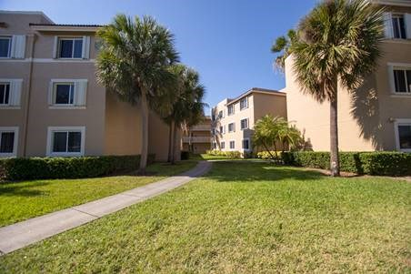 exterior landscape of apartment complex with palm trees_Westview Gardens Apartments Miami, Florida