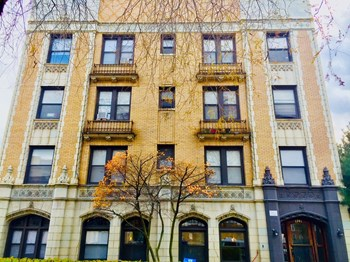1241 Loyola Avenue Studio-1 Bed Apartment for Rent Photo Gallery 1