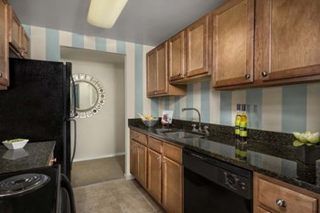 11012 Beacontree Lake Drive 1-2 Beds Apartment for Rent Photo Gallery 1