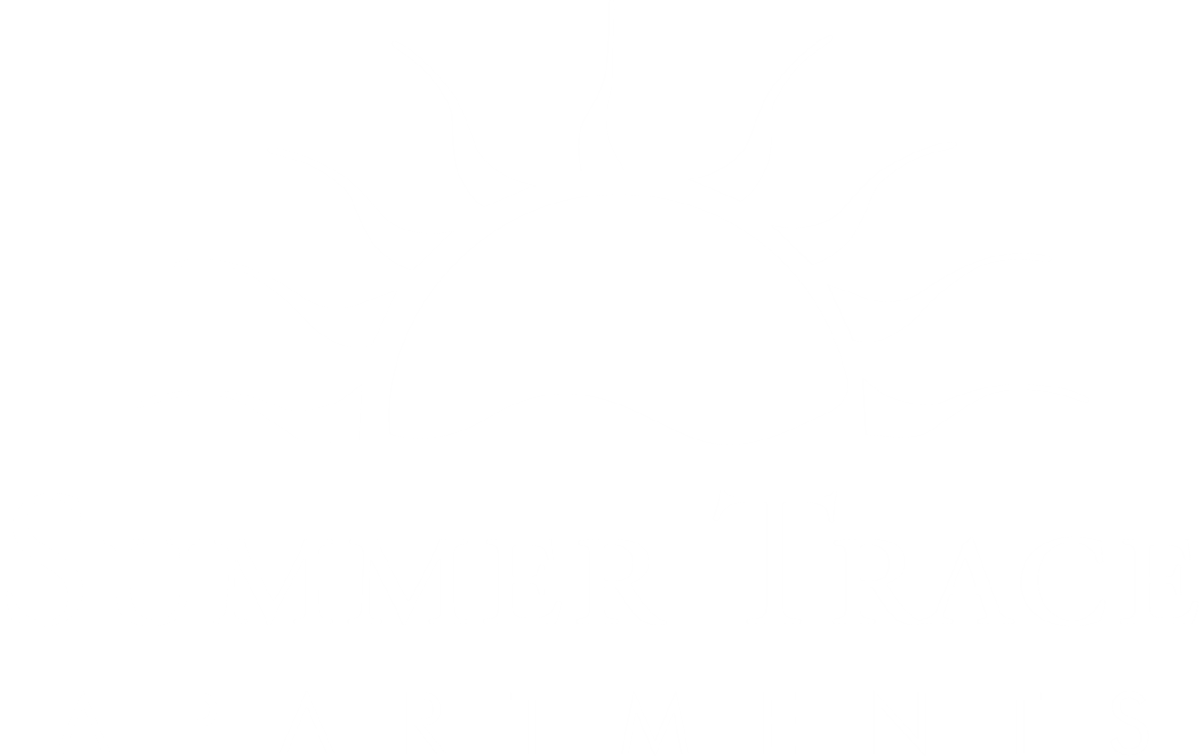 Summer Trace Property Logo 17