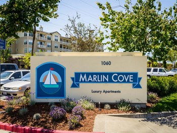 1000 Foster City Blvd 2 Beds Apartment for Rent Photo Gallery 1