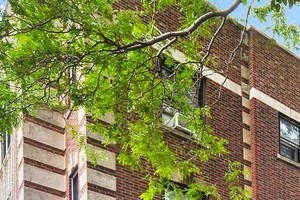 510-34 W. Addison St. 1-2 Beds Apartment for Rent Photo Gallery 1