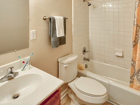 Buckroe Pointe Apartments and Townhomes bath
