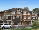 Aster Townhomes Community Thumbnail 1