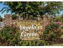 Angelo's Grove Community Thumbnail 1