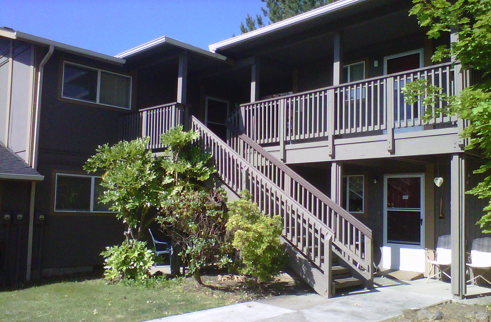 Pine Tree | Apartments in Winston, OR