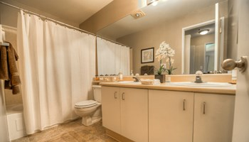 25102 62nd Ave S Studio-3 Beds Apartment for Rent Photo Gallery 1