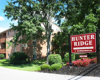 4593 Summerside Road Apt 13 1 Bed Apartment for Rent Photo Gallery 1