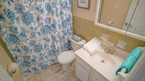 Bathroom at the Mariners Green Apartments in Newport News