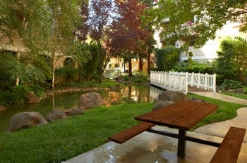 3128 Oak Rd Studio-2 Beds Apartment for Rent Photo Gallery 1