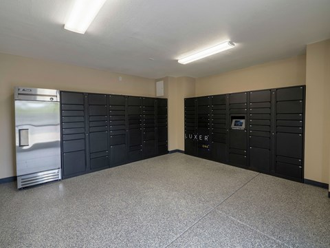Package and Cold Storage Lockers