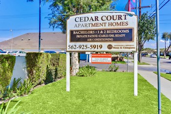 9841-9853 Cedar Court Studio-2 Beds Apartment for Rent Photo Gallery 1