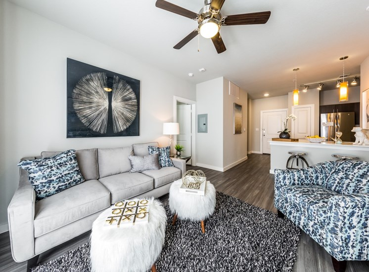 model living room north austin apartments