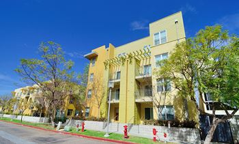 4071 39th Street 1-4 Beds Apartment for Rent Photo Gallery 1