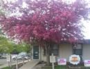 Ridgewood  - Columbus Community Thumbnail 1
