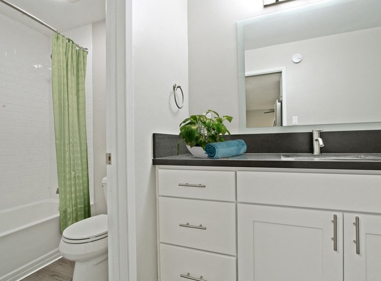 Vanity Area with a gray quartz countertops, bathroom with hot tub and shower combo on the left