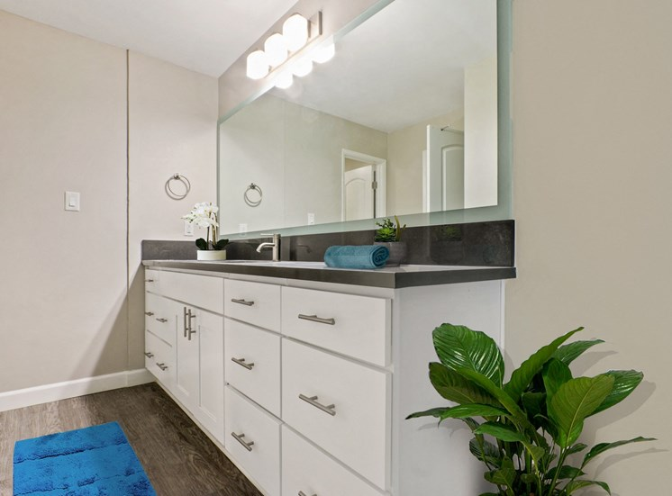 Single long gray countertops vanity  with mirror track lighting