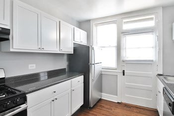532 Desplaines Ave Studio-1 Bed Apartment for Rent Photo Gallery 1