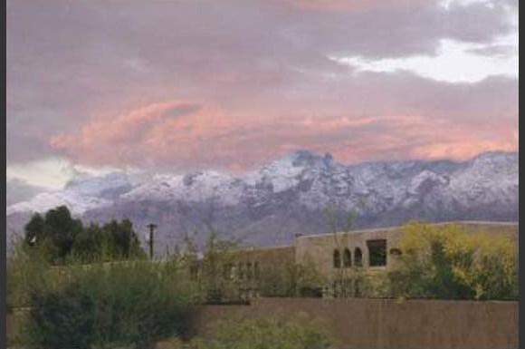Food City Application Online Tucson Az