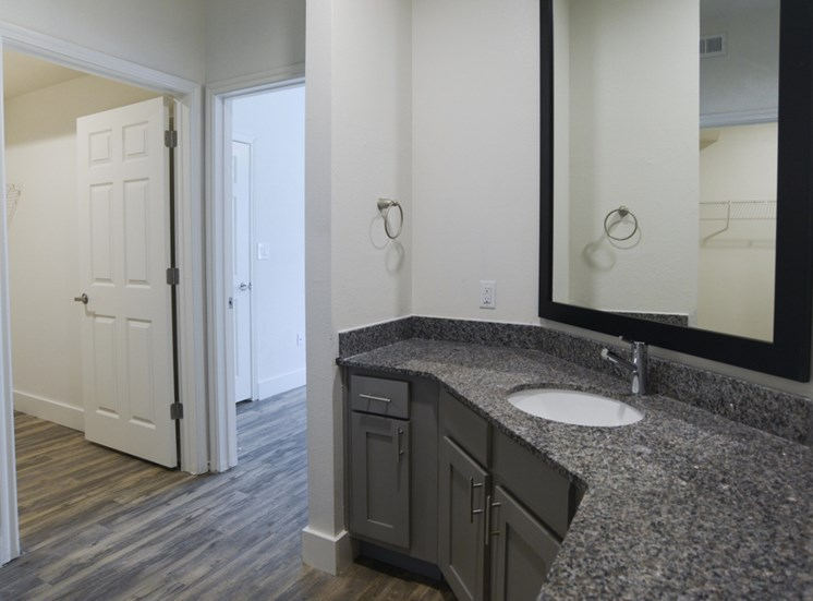 Designer Granite Countertops at Ellie Apartments, Texas