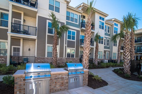 Courtyard With BBQ Area at Meridian at Fairfield Park, North Carolina