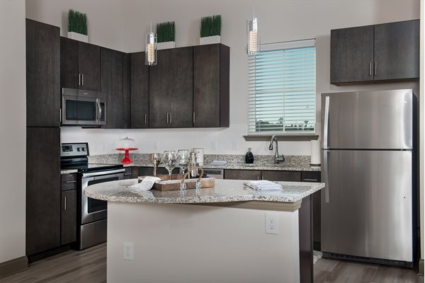 Energy Efficient Stainless Steel Appliances at Carriage Apartments Lugano, Luxury Kissimmee Apartments, 34741
