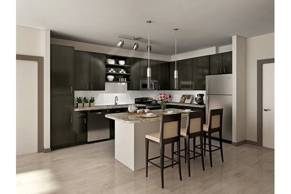 Fully-Equipped, Modern Kitchen at Lugano Apartments, 34741