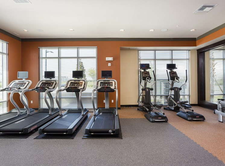 bank of cardio equipment in fitness center